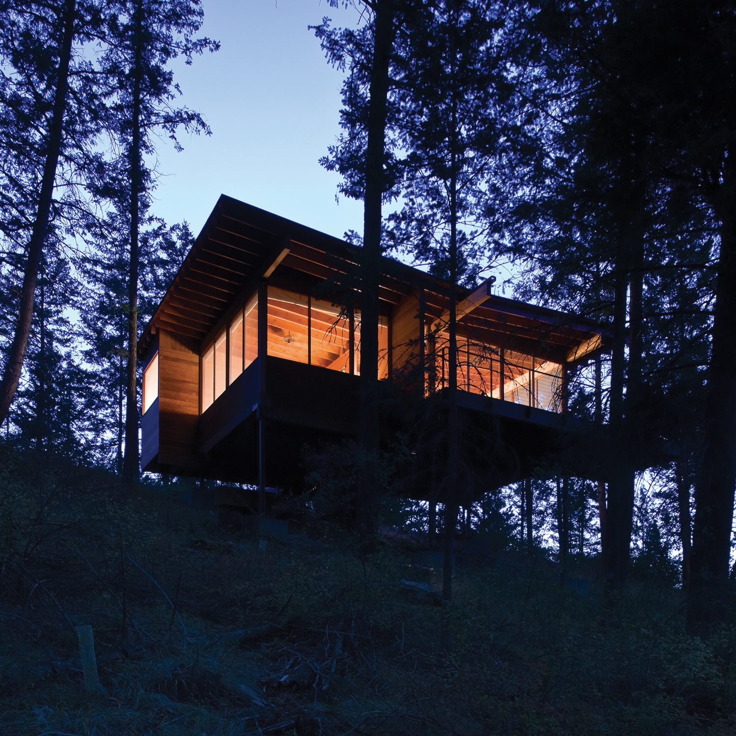 Modern cabin retreat by night